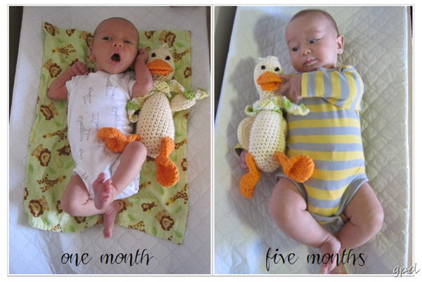 one-five-month